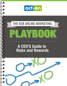 The B2B Online Marketing Playbook: A CEO's Guide to Risks and Rewards