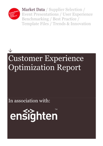 Econsultancy Report: Customer Experience Optimization