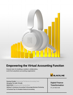Empowering the Virtual Accounting Function