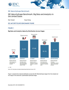 IDC MaturityScape Benchmark: Big Data and Analytics in the United States