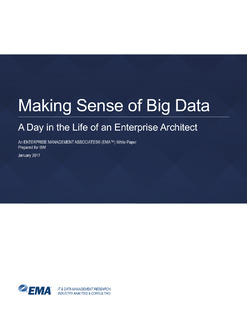 Making Sense of Big Data: A Day in the Life of an Enterprise Architect
