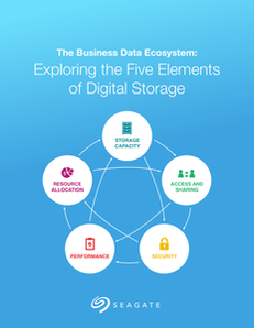 The Business Data Ecosystem:  Exploring the Five Elements of Digital Storage