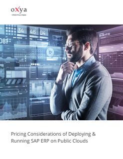 Pricing Considerations of Deploying & Running SAP ERP on Public Clouds