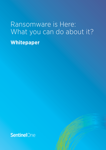Ransomware is Here: What Can You Do About It?