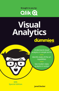 Visual Analytics for Dummies