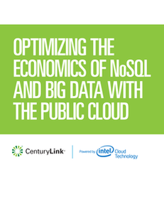 Optimizing Economics of NoSQL and Big Data in the Public Cloud