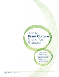 Build a Team Culture Among Your Employees