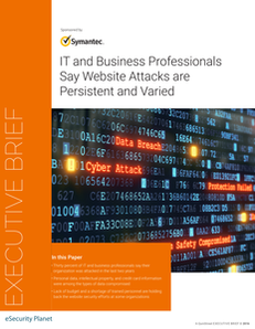 IT and Business Professionals Say Website Attacks are Persistent and Varied