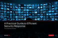 Practical Guide to Efficient Security Response Checklist
