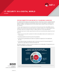 I.T. Security in a Digital World