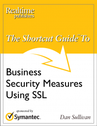 The Shortcut Guide to Business Security Measures Using SSL