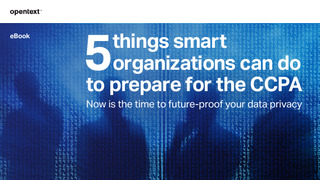 5 Things Smart Organizations can do to Prepare for the CCPA.