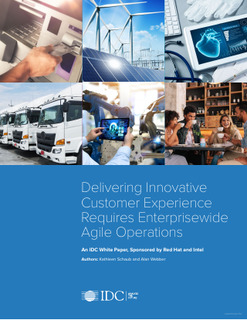 Delivering Innovative Customer Experience Requires Enterprisewide Agile Operations