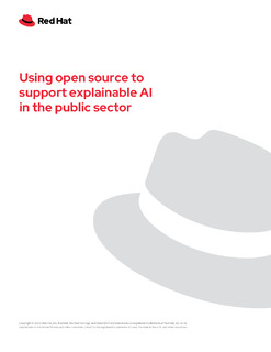 Using Open Source to Support Explainable AI in the Public