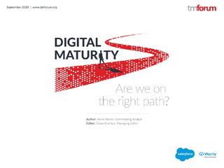 Digital Maturity: Are We On the Right Path