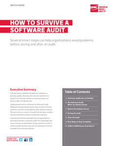 How to Survive a Software Audit