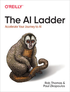The AI Ladder