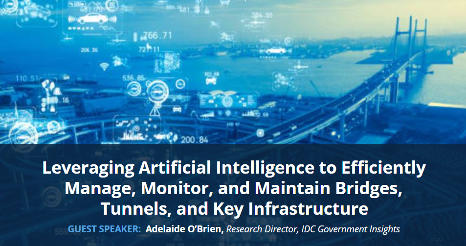 Leveraging Artificial Intelligence to Efficiently Manage and Monitor Bridges