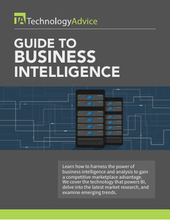 Beginner's Guide to Business Intelligence