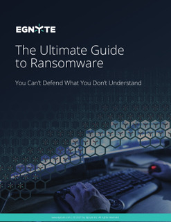 The Ultimate Guide to Ransomware