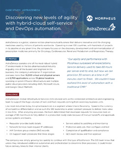 Discovering new levels of agility with multi-cloud self-service and DevOps automation.
