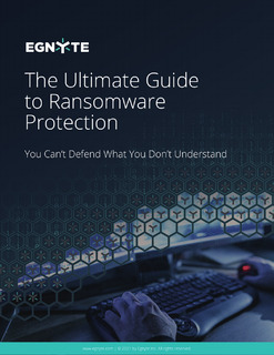 The Ultimate Guide to Ransomware Protection