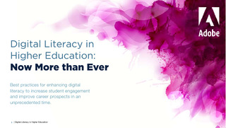 Digital Literacy in Higher Education: Now More than Ever