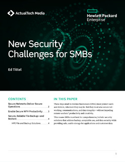 New Security Challenges for SMBs