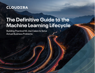 The Definitive Guide to the Machine Learning Lifecycle