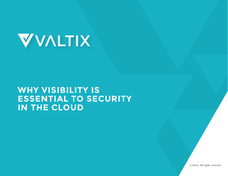 eBook: Why Visibility is Essential to Security in the Cloud