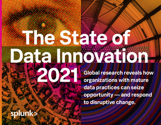 The State of Data Innovation 2021